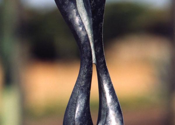 2004 Fêmea II P70